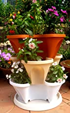 Livewell Green Self Watering 3-Tier Stacking Planter Set(3 Pots+1 Bottom Tray), Multi-color