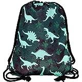 HECKBO gymtas kinderen meisje jongen - dino dinosaurus motief - 40x32cm - kleuterschool, kinderdagverblijf, crèche - rugzak,