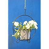 Green Gardenia Iron Hanging Basket with Metal Pot White