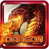 Dragon Fly War 3D