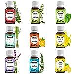 WishCare Essential Oil 9 In One Pack |Undiluted & Natural | Lemon Grass, Lemon, Lavender, Orange, Tea Tree, Peppermint...