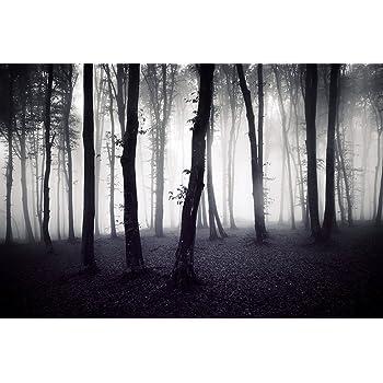 """Küchenrückwand alu dibond  Cuadros Lifestyle Küchen Spritzschutz """"Geheimnisvoller Wald ..."""
