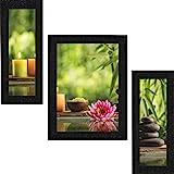 SAF Set of 3 Lotus Flower Floral UV Coated Home Decorative Gift Item Framed Painting 13.5 inch X 22.5 inch SANFSA9187