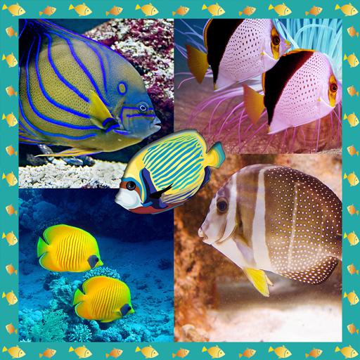 Fisch Foto Collage Maker -
