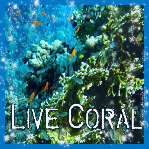 Coral Reef In the Deep Sea LWP (Reef Deep)
