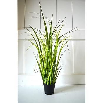 Graser Topf Gras Deko Grun Zimmerpflanze Grasbuschel Pflanze 40cm