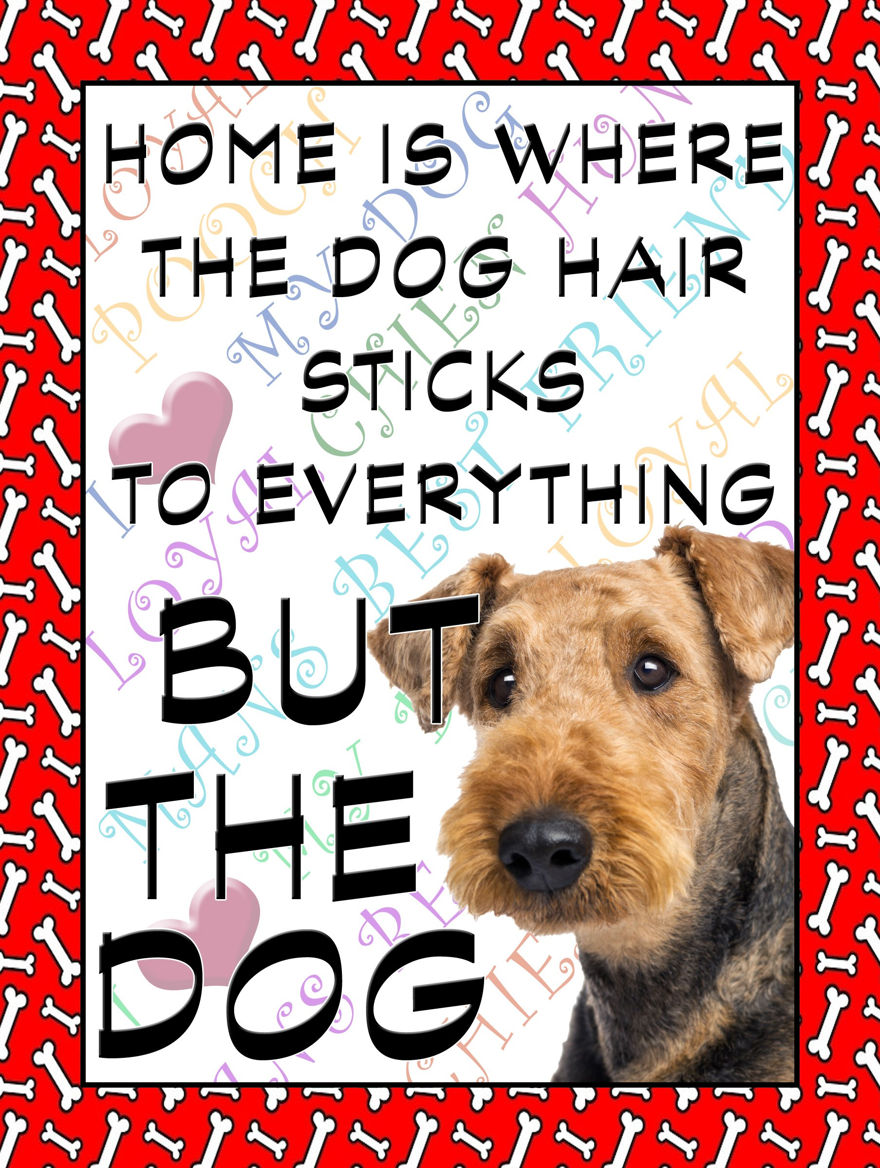 """Airdale Terrier Dog Fridge Magnet 100mm x 75mm """"HOME IS WHERE THE DOG HAIR STICKS TO EVERYTHING BUT THE DOG"""" NOVELTY GIFT"""