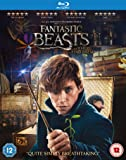 Fantastic Beasts and Where to Find Them [Edizione: Regno Unito] [Blu-Ray] [Import]