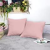 AYSW Lot de 2 Taie d'oreiller 65cm x 65cm Rose Fermeture Éclair Dissimulée Anti-Acariens Hypoallergénique en Microfibre