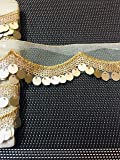 Eerafashionicing Light Gold lace with Sequence Work (9 Meter X 3 .5 cm)