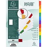 Exacompta - Réf. 2312E - Intercalaires en carte blanche 160g/m2 FSC® avec 12 onglets neutres en couleurs - renforcés et plast