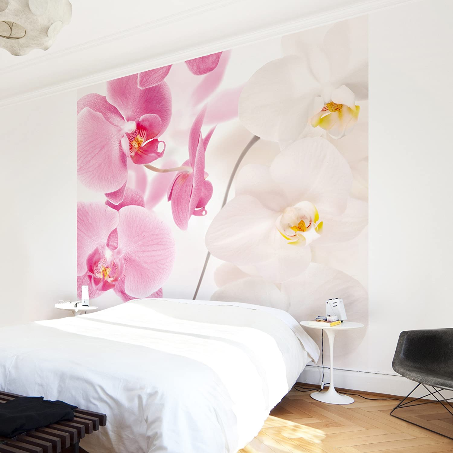 Fototapete schlafzimmer orchidee  Apalis Fototapete Orchidee - Vliestapete - Delicate Orchids ...