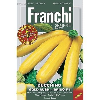SEMI DI ZUCCHINO GIALLO ORO GOLD RUSH IBRIDO F.1 - FRANCHI SEMENTI - SEMENTI SELEZIONATE DBOS146/45 BUSTINA GR 3