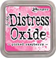 Ranger Tim Holtz Distress Oxide Pad-Picked Raspberry, Synthetic Material, Pink, 7.5 x 7.5 x 1.9 cm