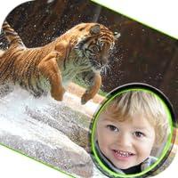 Tierwelt Bilderrahmen