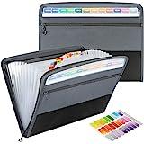 Uquelic Clasificadores Carpetas, 13 Bolsillos Clasificador Documentos Acordeon, Portátil Organizador de Archivos A4 de Cremal