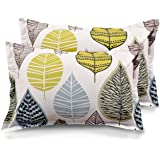 "Ahmedabad Cotton 2 Piece Cotton Pillow Cover Set - 18""x27"", Beige, Green and Blue"