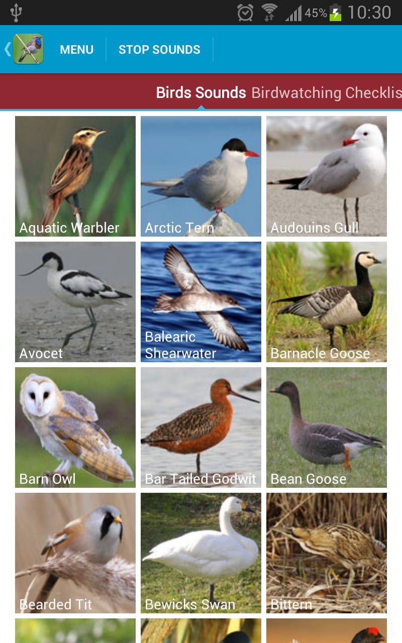 Uk Birds Sounds Appstore For Android How To Build Cuckoo Sound Generator 000