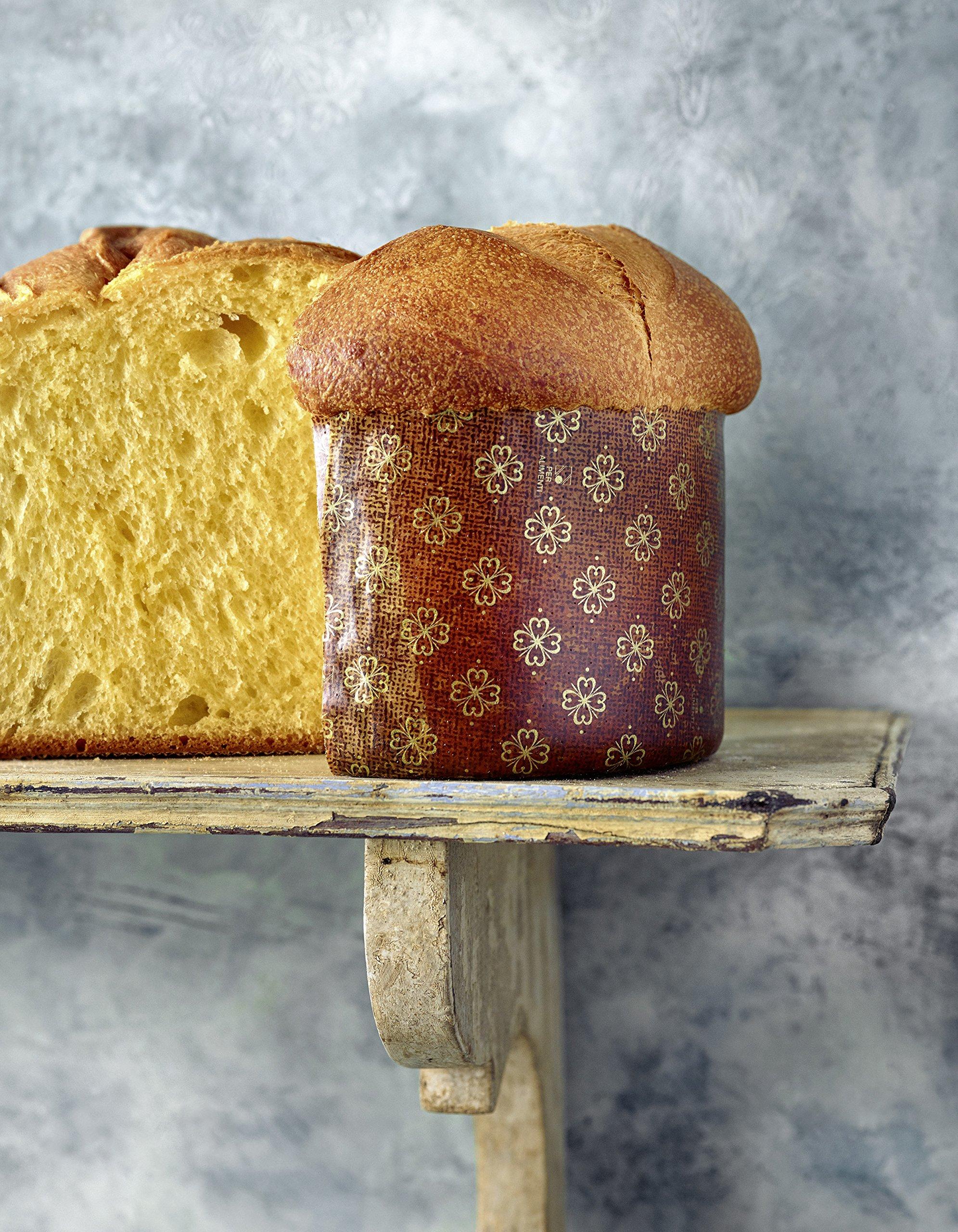 Brot backen in Perfektion mit Sauerteig – Das Plötz-Prinzip! – Vollendete Ergebnisse statt Experimente – 60 Brotklassiker – Baguette, Dinkelbrot, Frühstücksbrötchen, Croissants und mehr