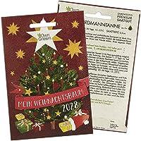 Nordmanntanne zum Pflanzen: Mein Weihnachtsbaum 2028 – Premium Weihnachts Samen für 5x Nordmanntanne Weihnachtsbaum…