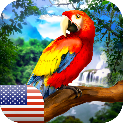 American Parrots: Family Survial - wild jungle birds survial adventure!