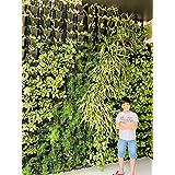 Planters Plastic Vertical Garden Panel Frames With Pots, Black, 12 Frames And 36 Pots