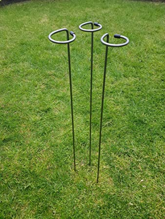 Metal Plant Supports Loop Stakes 5 pack 80cm 100cm or 130cm tall