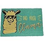 koko doormats felpudos Entrada casa Originales, Fibra de Coco y PVC, Felpudo Exterior Llama - NO Prob, 40x60x1.5 cm | Alfombr