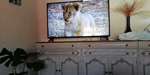 Amazon Basics - Antena de TV ultradelgada para interiores, alcance de 40,2 km