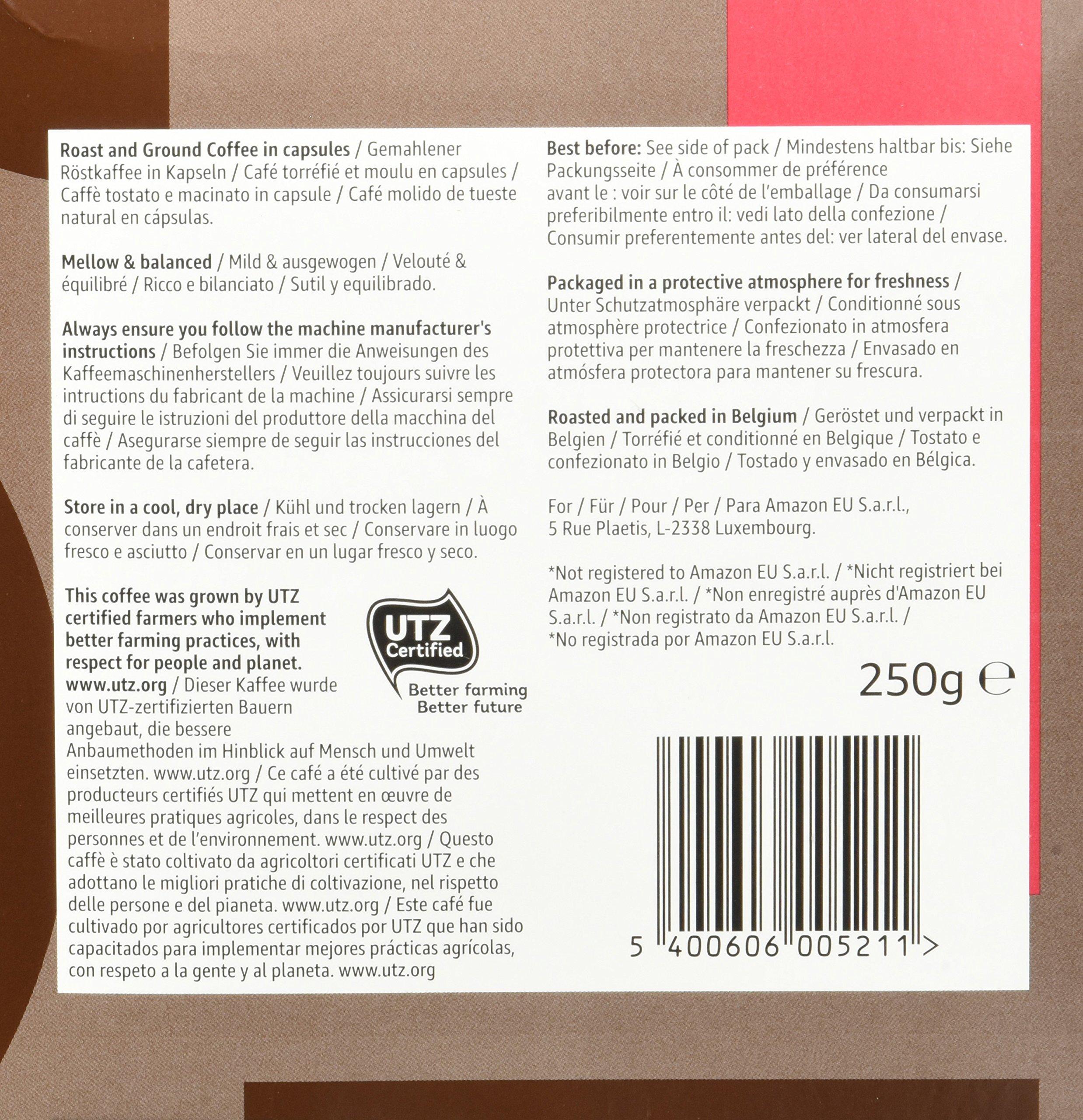 Marchio Amazon Solimo Capsule compatibili Nespresso