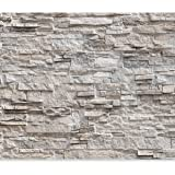 murando - Fototapete Steinoptik 400x280 cm - Vlies Tapete - Moderne Wanddeko - Design Tapete - Wandtapete - Wand Dekoration - Steintapete Steine Stein Mauer Steinoptik 3D f-C-0164-a-b