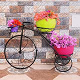 Livzing Tricycle Plant Stand Flower Pot Holder - Indoor Outdoor Display Decor Bicycle Rack - for Home Balcony Garden…