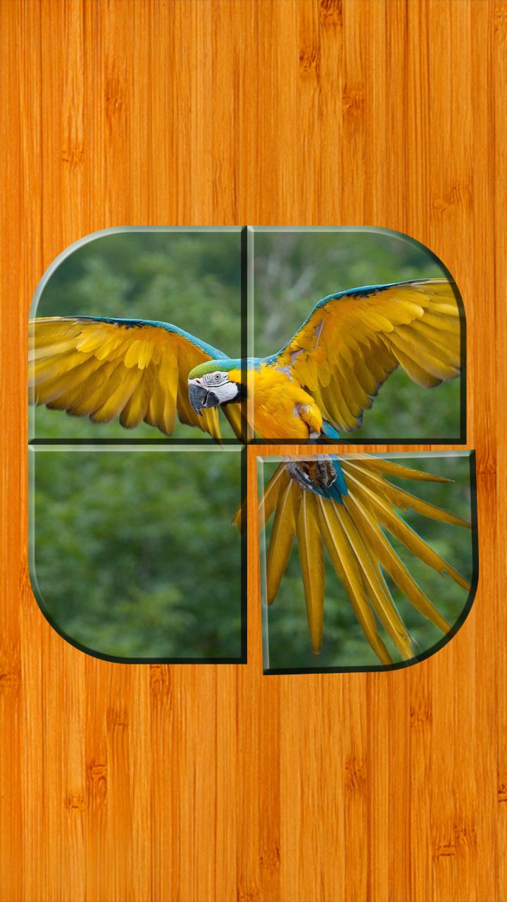 jeux de puzzle oiseaux gratuit  amazon fr  appstore pour android