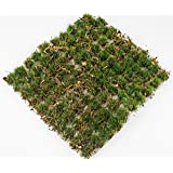 WWS Ancient Oakland 10 mm självhäftande statisk gräs tufts x 100 – järnvägsmodellering, modeller, krigspel