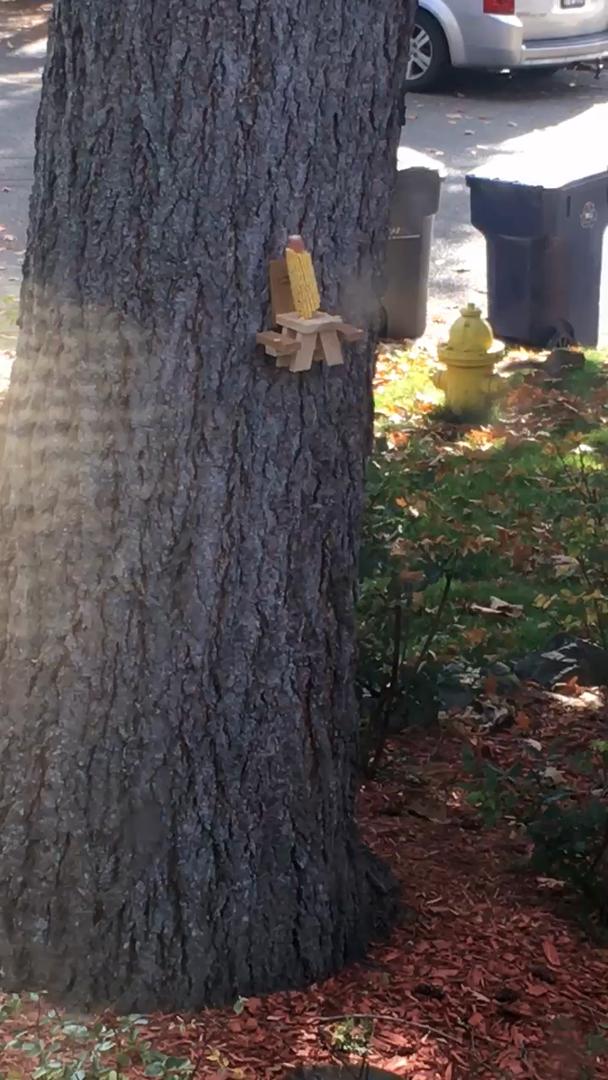 The Squirrel Shop Mesa de picnic ardilla alimentador: Amazon.es ...