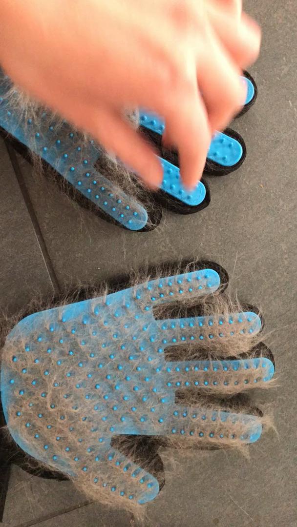 Amazon.de:Kundenrezensionen: 2PCS Pet Bürste Handschuh
