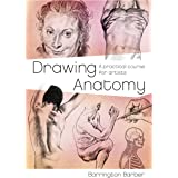 Drawing Anatomy: A Practical Course for Artists