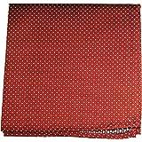 Paul Malone de carré de poche mouchoir 100% soie Rouge pois