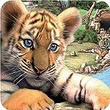 Wildlife Park [PC Download]