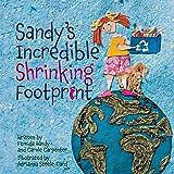 Sandy's Incredible Shrinking Footprint