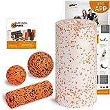 Blackroll Orange Starter Set, mit der Faszienrolle MED, alles für den softeren Einstieg ins Faszientraining, inkl. Übungsposter und Booklet