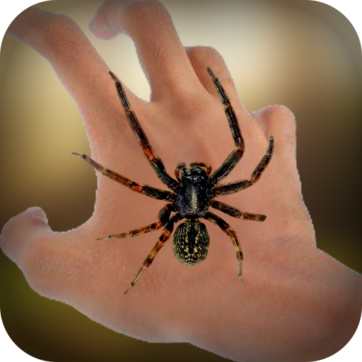 real-spider-on-hand-free