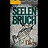 Seelenbruch (Jim Devcon-Serie 2)