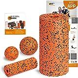 Blackroll Orange (Das Original) Starter Set mit der Faszienrolle Pro, alles für den intensiven Einstieg ins Faszientraining, inkl. Übungsposter und Booklet