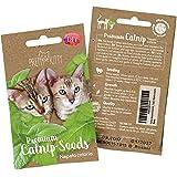 PRETTY KITTY Katzenminze Samen für Katzen, Premium Katzenminze Saatgut (Nepeta Cataria) für 150 Katzenminze Pflanzen