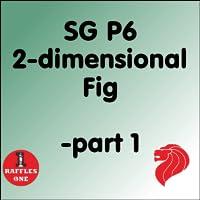SG P6 2-dimensional Fig-part 1
