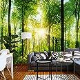 murimage Fotobehang bos 3D 366 x 254 cm inclusief lijm behang bomen woonkamer keuken slaapkamer