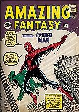 Marvel 'Spider - Man Fantasy' Officially Licensed Poster (30.48 cm x 45.72 cm)