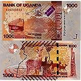 Arunrajsofia 1000 Ugandan Shilling Rare Collection