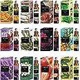 Parag Fragrances Essential Oils Set of Lavender, Tea Tree, Rosemary, Pineapple, Jasmine, Strawberry, Eucalyptus, Rose, Lemong
